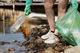 World Cleanup Day: в Днепре волонтёры очистили косу на набережной