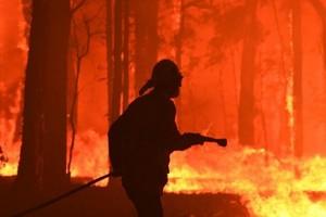 На Днепропетровщине ночью ликвидировали возгорание на открытой территории сельхозугодья