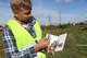 Агрохимический метод борьбы с амброзией: в Днепре проводят последние ревизии