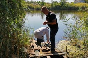 Пить нельзя, купаться можно: результаты анализа качества воды в озере Курячее