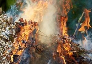 Подожги листья — заболей раком: в Днепре запускают экологическую акцию