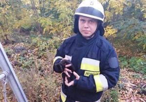 В Днепре спасатели сняли котенка с дерева