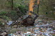 В Днепре после обильных осадков внепланово чистят дренажно-сливной канал