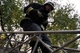 В Днепре специалисты Службы спасения сняли кота с дерева