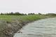 Еще одну реку на Днепропетровщине перегородили каменными глыбами: течение заблокировано