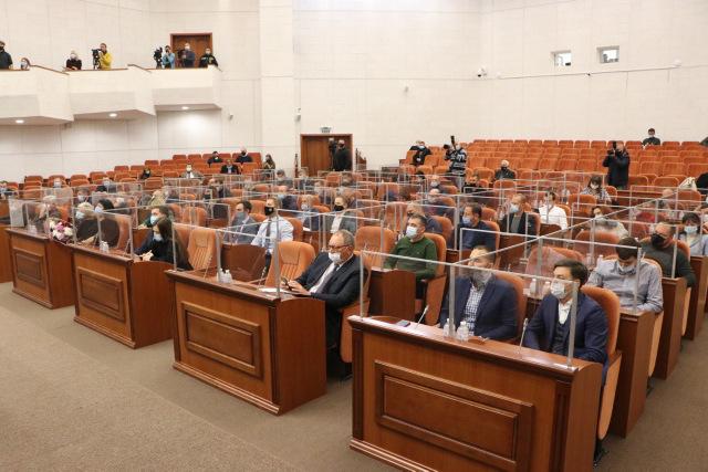 Депутаты спорили о застройке зеленых зон и разрешили реконструировать роддом