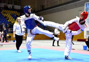 Копилка сборной Днепропетровской области по таэквондо пополнилась на 21 медаль