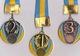 Тяжелоатлеты из Каменского завоевали 8 медалей на всеукраинском турнире