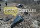 ДТП в Каменском: Smart вылетел в кювет, один человек погиб