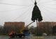 В парке Глобы продолжают устанавливать елку из натуральной хвои