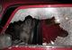 В Павлограде полицейские семь часов пытались убедить должника по алиментам отогнать арестованный автомобиль на штрафплощадку