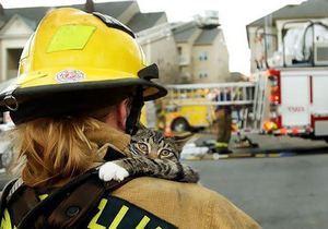 В Днепре МЧС будут спасать даже хомячка на пожаре