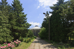 Что посмотреть - Ботанический Сад Университета