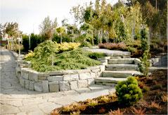Сеть садовых центров Сакура