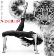 Спорт и активный отдых - Эндорфин (N-DORFIN) - группа фитнес-клубов