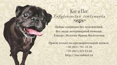 Медицина - Хирургическая ветеринарная клиника Кот и Пес
