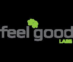 Компьютеры и интернет - ФилГудЛабс (FeelGoodLabs), OOO