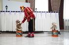 Цирк, цирк, цирк! (Чеширский кот, 7.12.2014)