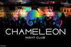 NEON NIGHT (17.10.15, NK Chameleon)