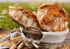 И то хлеб: необычные рецепты любимого продукта