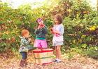 Признаки витаминной недостаточности у детей