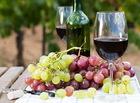 Домашнее вино: делаем вино из винограда, из яблок, из сливы