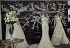 Bellissima wedding show 2011